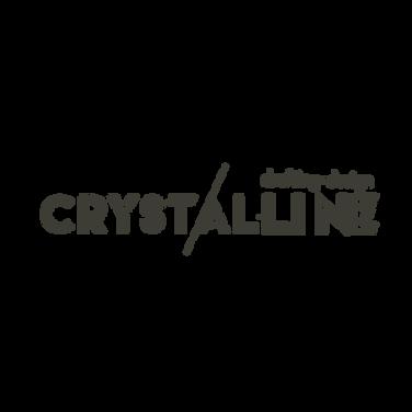 Client Logo Template 3E3D35-18-18.png