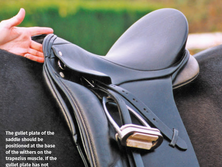 TOP 10 SIGNS OF POOR SADDLE FIT
