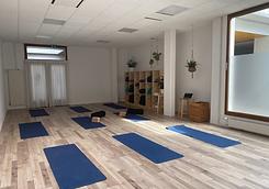 English Virtual, Yoga, Strength, Dance, Mobility, Martial Arts Classes in Geneva, Switzerland