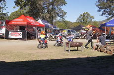 camping at the Kenilworth Chook Chase