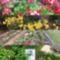Happy Garden in Canco Park.jpg