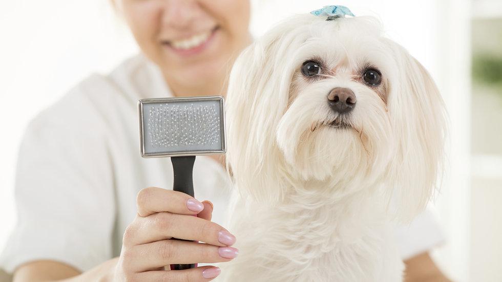 Pet Hair Detangler