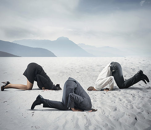 Wills heads in the sand.jpg