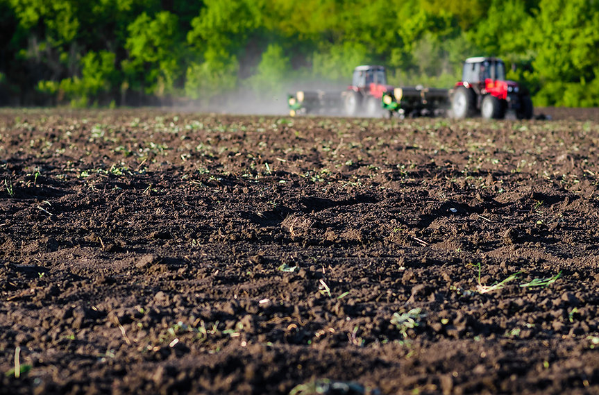 purearth farming.jpg