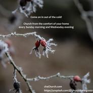 service invite - snow on rosehips.jpg