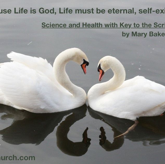 anytime SH 289-32 Life is eternal.jpg