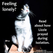 anytime loneliness cat article.jpg