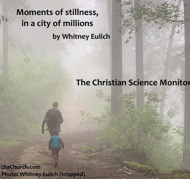 monitor - moments of stillness.jpg