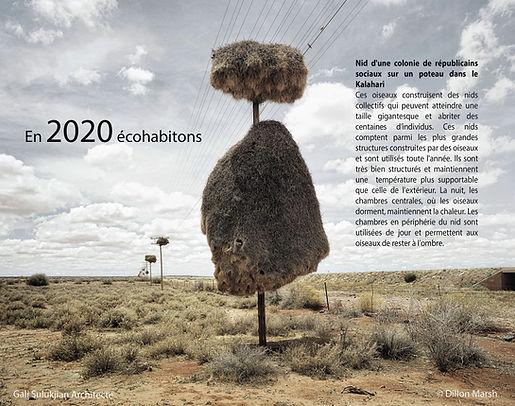 2020 voeux.jpg