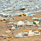 Beach cleanup.png
