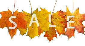 red autumn leaf for sale_edited.jpg