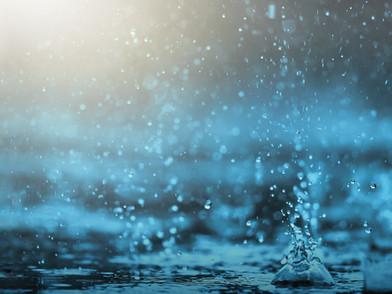 New Sheet Music from Through the Rain