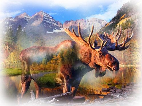 Hoffman Moose
