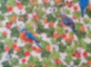 Bluebird%20%26%20Cloudberry_edited.jpg