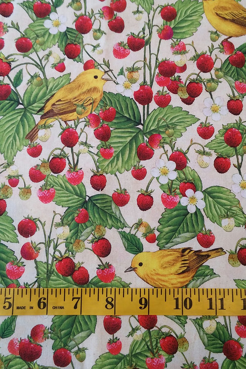 Yellow Warbler and Wild Strawberries