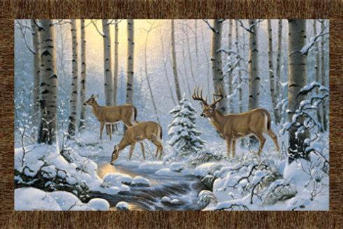 NC Pine Valley Deer