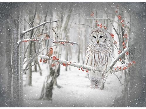 Bird and Owl panel