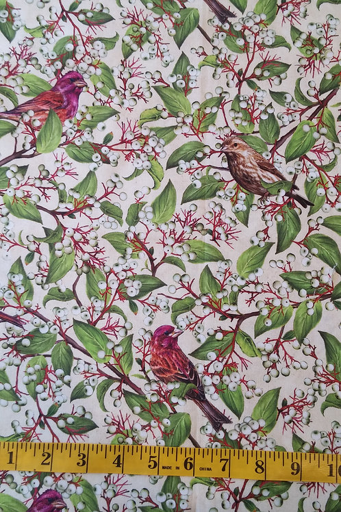 Purple Finch & Grey Dogwood