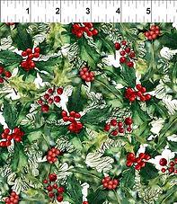 Poinsettia 5APW1.jpg