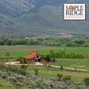 Maple Ridge Ranches