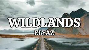 """""""Wildlands"""" by Elyaz (2020) - Track of the Week"""