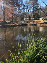 Loring Heights Park Pond