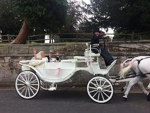 george grace wedding.jpg