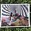 Thumbnail: Mushroom Exploration