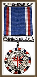 ANAVETS medal.png