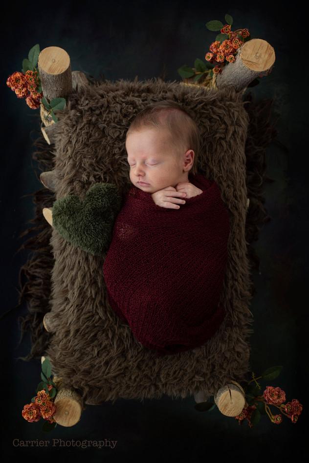 Newborn-photography-Florida-2018Poling4.