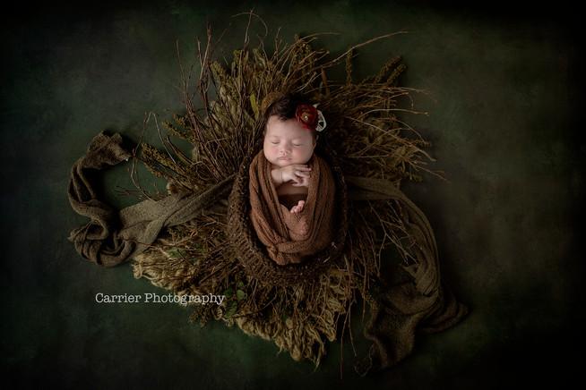 Dunedin-Florida-Newborn-photography2018B