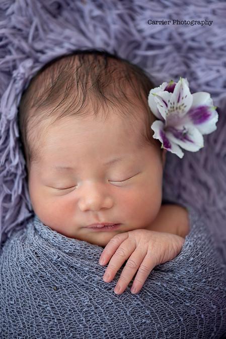 Newborn-Photos-Tampabay-Florida-Dunedin-