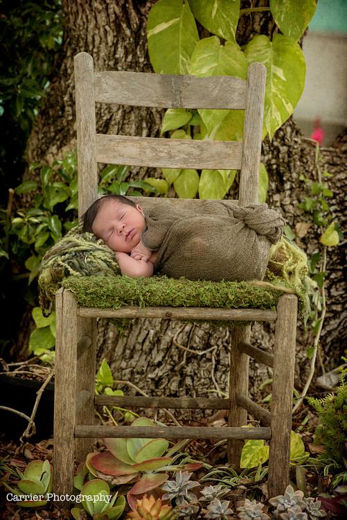 Florida-Newborn-photography-Dunedin-2017