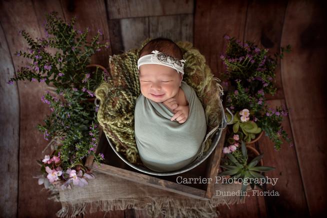 Newborn-photography-Tampa-Florida-Dunedi