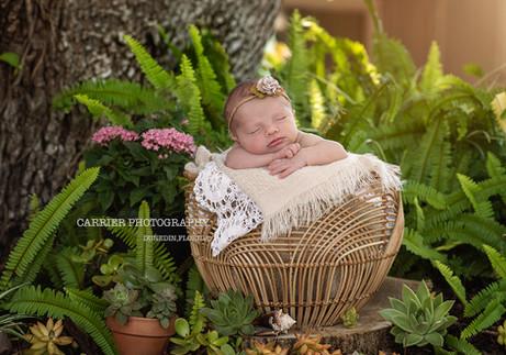lifestyle-newborn-photography-florida-Ta