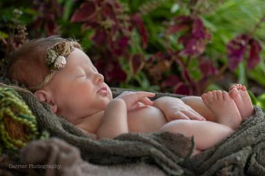 Newborn-photography-Florida-2018Poling6.