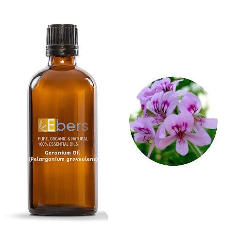 Geranium Oil (Pelargonium graveolens) 15 ml