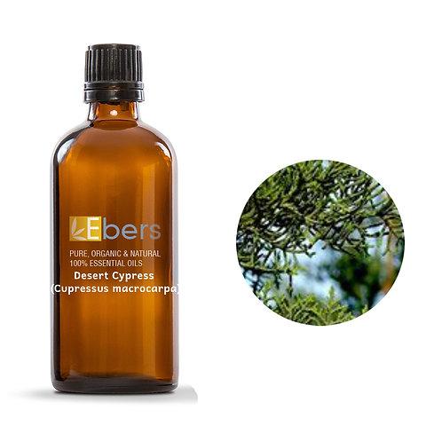 Desert Cypress (Cupressus macrocarpa) 15 ml