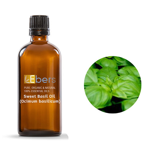 Sweet Basil Oil (Ocimum basilicum) 15 ml