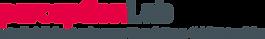 Logo_pLab_Standard_RGB.png