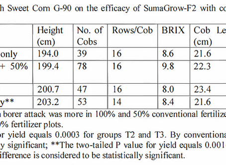 Trial Result - Lalitha-21 vs Conventional Fertilizer (Sweet Corn)