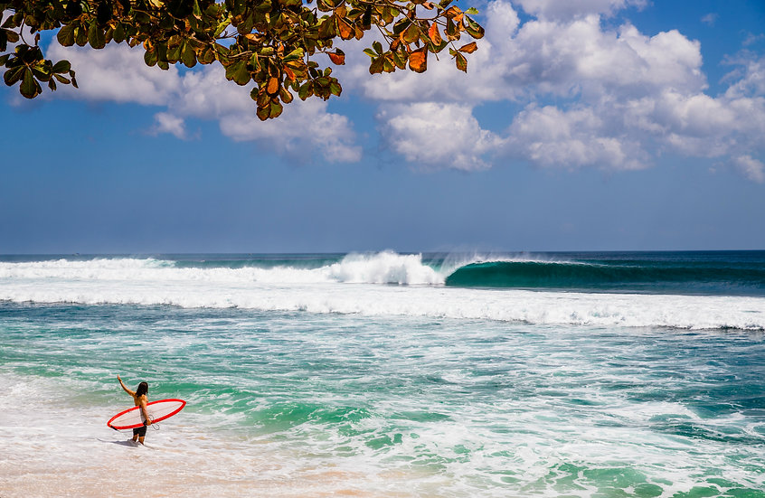 Indonesian Perfection, Bali