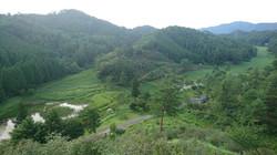 徳島県の天然記念物「サギソウ」の他、様々な動植物が生息する、貴重な湿原。