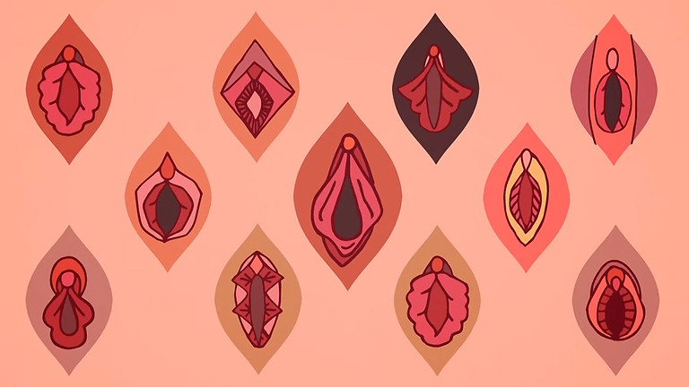 Labia Lessons with This Is A Vulva