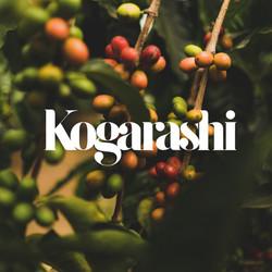 Kogarashi Logo