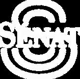 logo-senat(B).png