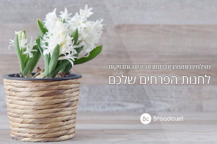 תמונות מעוצבות לחנות פרחים/ ברודקאסט