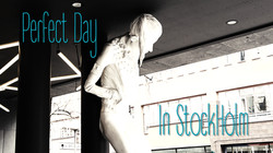 capa video perfect day