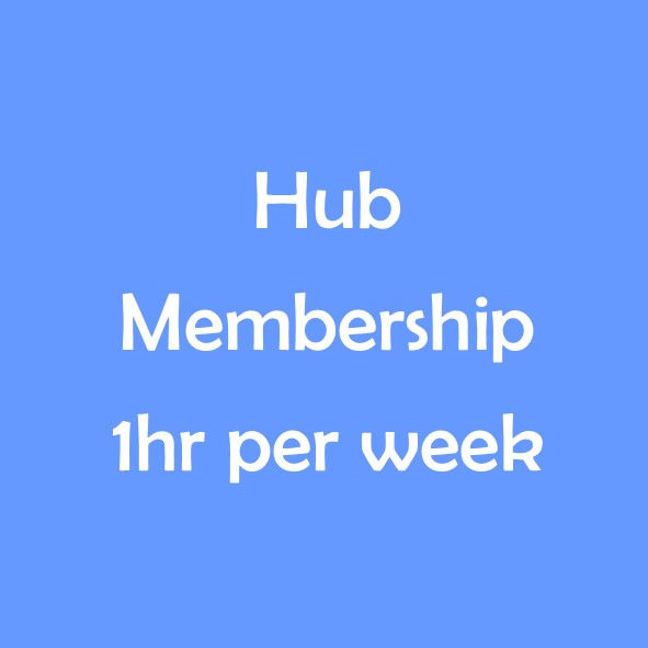 HUB TERM MEMBERSHIP - 1 HOUR PER WEEK
