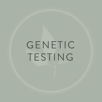 7 Genetic.png